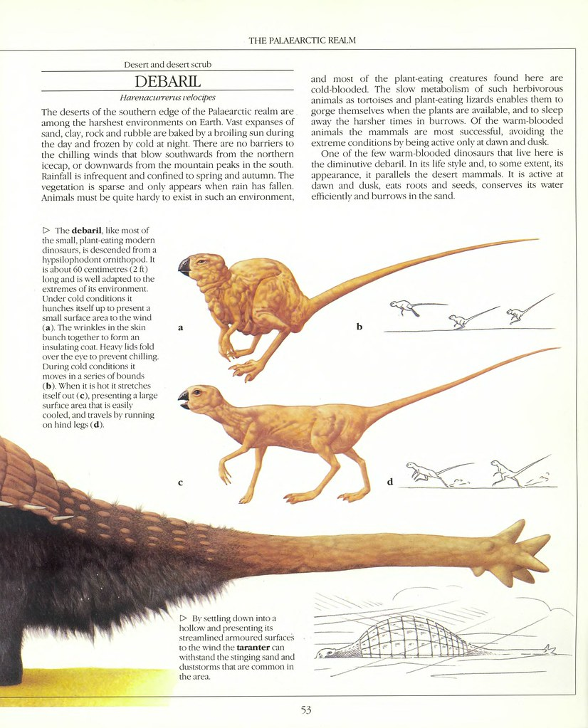 The New Dinosaurs - Dougal Dixon 1988_page_0053