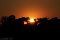 Going Down () (dipu10dhaka) Tags: sunset canon village going 7d end sylhet bangladesh goingdown lastmoment dayend