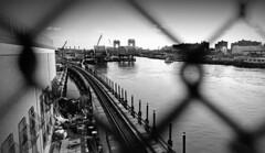 15440026 (McGography) Tags: new york nyc newyorkcity bridge bw train 35mm nathan minolta tracks nate 100 ilford x700 rokkor deltra mcgarigal