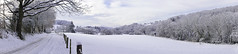 weinsbergtal, panorama. (*Sabine*) Tags: schnee trees winter snow nature forest germany deutschland weide woods europa europe natur meadow pasture handheld wald bume solingen weinsbergtal sweeppanorama