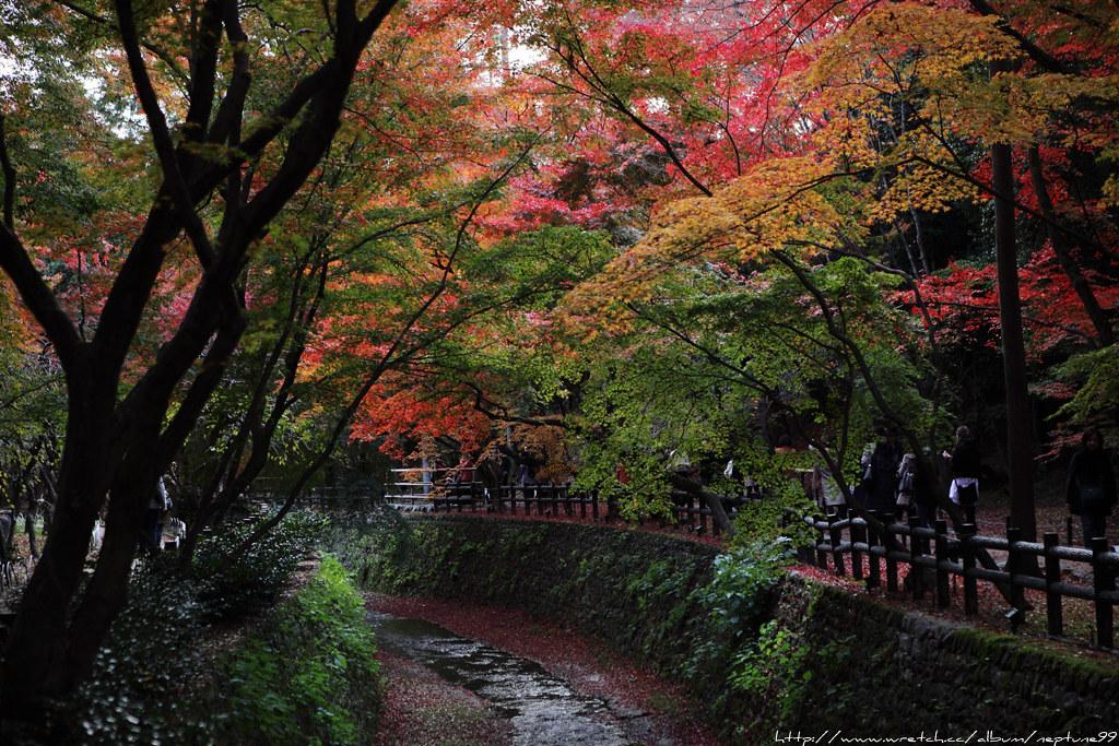 京阪散策 洛西篇