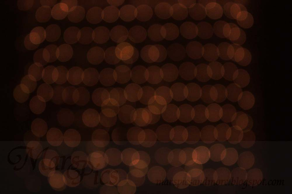 Holiday Bokeh Party