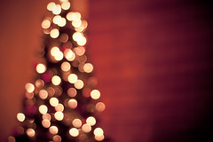 Oh Christmas Tree. (CarolynsHope) Tags: christmas red holiday blur tree love hope lights cozy blurry warm mood bokeh joy christmastree christmaslights carolynshope gettyholidays2010