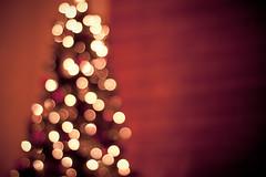 Oh Christmas Tree. (CarolynsHope) Tags: christmas red holiday blur tree love hope lights cozy blurry warm mood bokeh joy christmastree christmaslights carolynshope gettyholidays2010