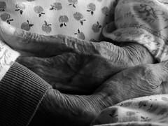 Mani di madre (Alberto Guglielm8) Tags: mani madre