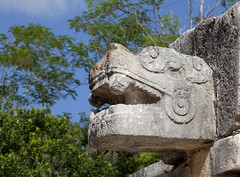 Serpent head overlooking Ballcourt (Dalephonics) Tags: trees stone mexico head snake chichenitza jungle jaguar serpent ballcourt templeofthejaguar