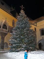 Altes Rathaus Christbaum - PC181349