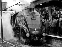 60007 at York (Gerry Balding) Tags: york england people station train pacific yorkshire platform engine steam passengers locomotive a4 excursion lner uksteam sirnigelgresley 60007 yorkyuletideexpress railwaytouringcompany