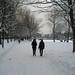 Brighton under snow