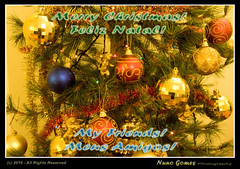 Merry Xmas to all my friends!!! (Nuno-Gomes) Tags: santa christmas new xmas natal happy holidays year merry feliz claus pai novo festas ano ohhh felizes nunogomes mygearandmepremium mygearandmebronze mygearandmesilver mygearandmegold mygearandmeplatinum mygearandmediamond ngomes