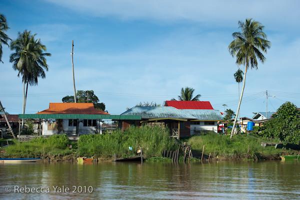 RYALE_Kinabatangan_River_30