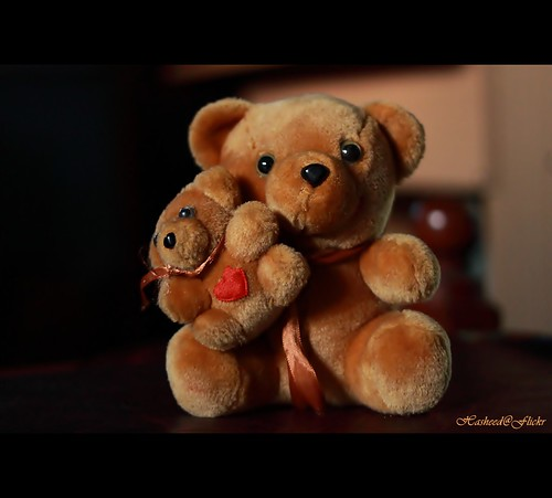 Teddy bears don't need hearts as they are already stuffed with love......(Explored !!!) / Hasheed Parthan