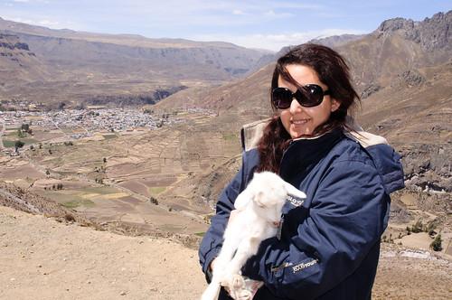 Adriana and the lamb