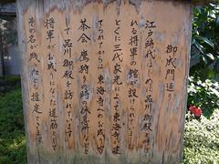 Shogun's road