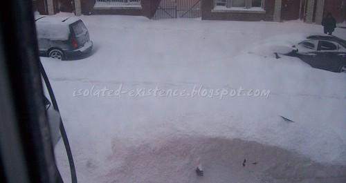Blizzard2010Seven