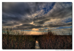 (Randolph Knackstedt) Tags: california sunset sky reflection art nature wet water colors beautiful clouds photoshop canon landscape photography bay canal high saturated san francisco pretty raw dynamic deep tokina adobe swamp saturation wetlands bayarea lands lovely dslr range hdr highdynamicrange wetland lightroom potn photomatix photographyonthenet adobelightroom rjx hdrsoft cs5 40d canon40d tokina1116 tokina111628