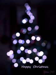 Christmas tree bokeh (Dru Dodd) Tags: christmas dru tree happy lights bokeh olympus andrew zuiko e30 dodd 1260mm