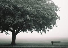 [it would be like fog]
