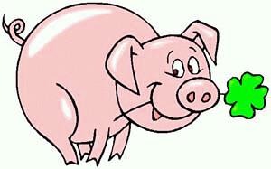 gluecksschwein1