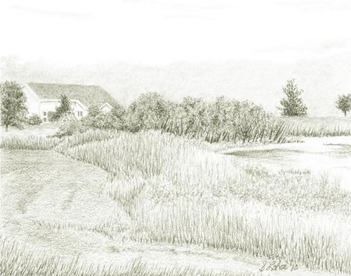 At the Edge of the Pond, graphite
