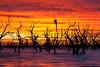 _MG_9368 (Wai Cheong Chan) Tags: lake sunrise landscape menindee pamamaroo andychan