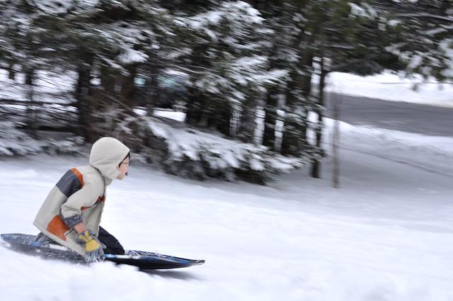 Michael sled