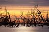 _MG_9409 (Wai Cheong Chan) Tags: longexposure lake sunrise landscape menindee pamamaroo andychan