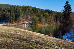 lake (Karmen Smolnikar) Tags: trees lake snow reflection nature water spring path meadow slovenia slovenija gradisce gradie