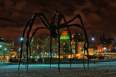 """Maman"" in Ottawa (beyondhue) Tags: christmas sky sculpture brown canada art night lights spider us gallery ottawa embassy national maman chateau laurier hdr beyondhue TGAM:photodesk=night"