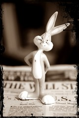 Stuck in the middle of a financial crisis! (Chandan Naik) Tags: bunny bugs hiding doc whatsup bugsbunny dyamite