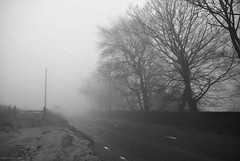 (andrewlee1967) Tags: road uk trees england blackandwhite bw mist fog gate britain gb saddleworth andrewlee sigma18200mm andrewlee1967 canon50d