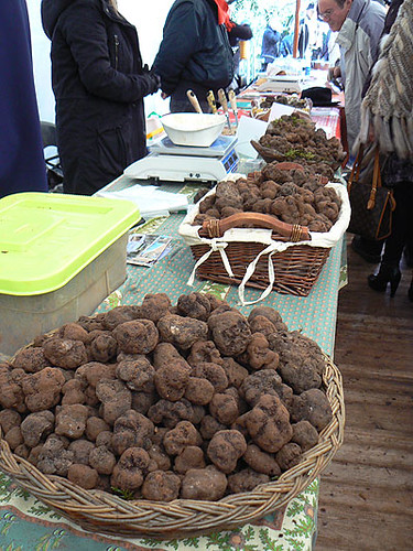 les truffes.jpg