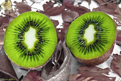 Kiwis. [EXPLORED] ( Mario Gutirrez Photographer) Tags: food color macro verde green closeup fruit object comida vert fruta tropical kiwi nourriture verte fruite
