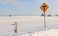 A la croise d'un rang (monilague) Tags: winter white snow nature field yellow clouds jaune landscape divers seasons hiver neige nuages paysage pancarte champ saisons brome missisquoi bromemissisquoi