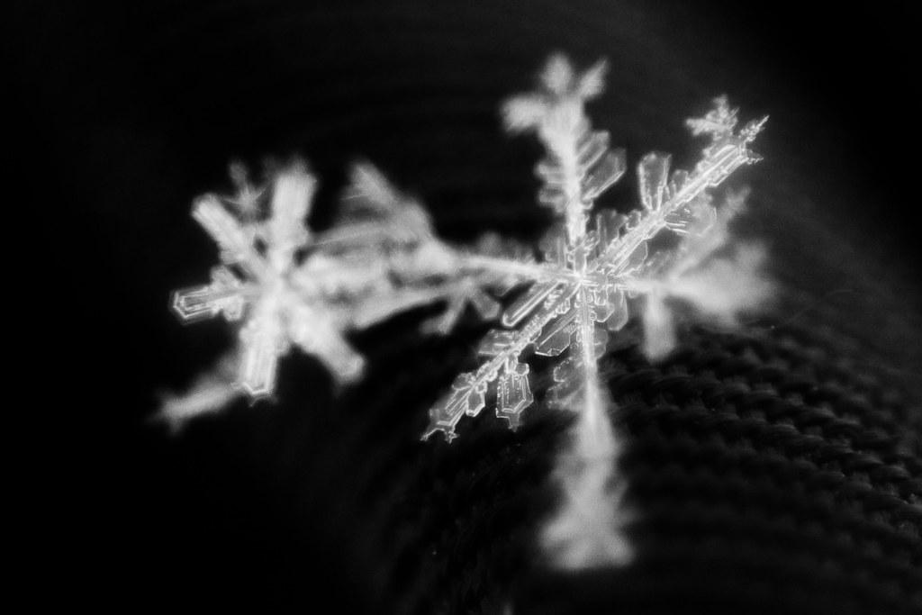 snowflake PMM 3
