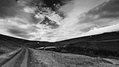 Iceland snapshot (C.Kwakkestein) Tags: iceland vacation nikon d7200 tokina 1120 landscape