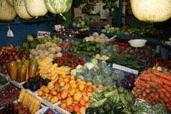 Vielfalt tropischer Nutzpflanzen Costa Ricas