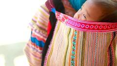 (Kaz.MO) Tags: life travel portrait flower beautiful beauty canon wonder asian asia live hills vietnam 7d tribe  hmong cuty  bacha  simacai  earthasia