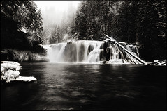 Lost Feeling (Vinnyimages) Tags: bw snow cold ice washington northwest falls cascades pacificnorthwest washingtonstate lowerlewisfalls vinnyimages wwwvinnyimagescom vinnyimagescom