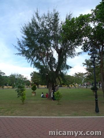 Lingayen3