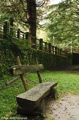 Solitudine e pace... (Diego Avolio) Tags: nikon italia diego natura pace 24mm calabria solitudine serre d300 certosa avolio d300s