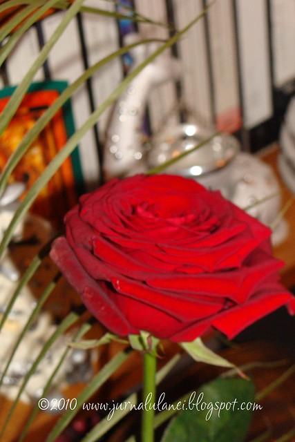 trandafir de Sf. Andrei
