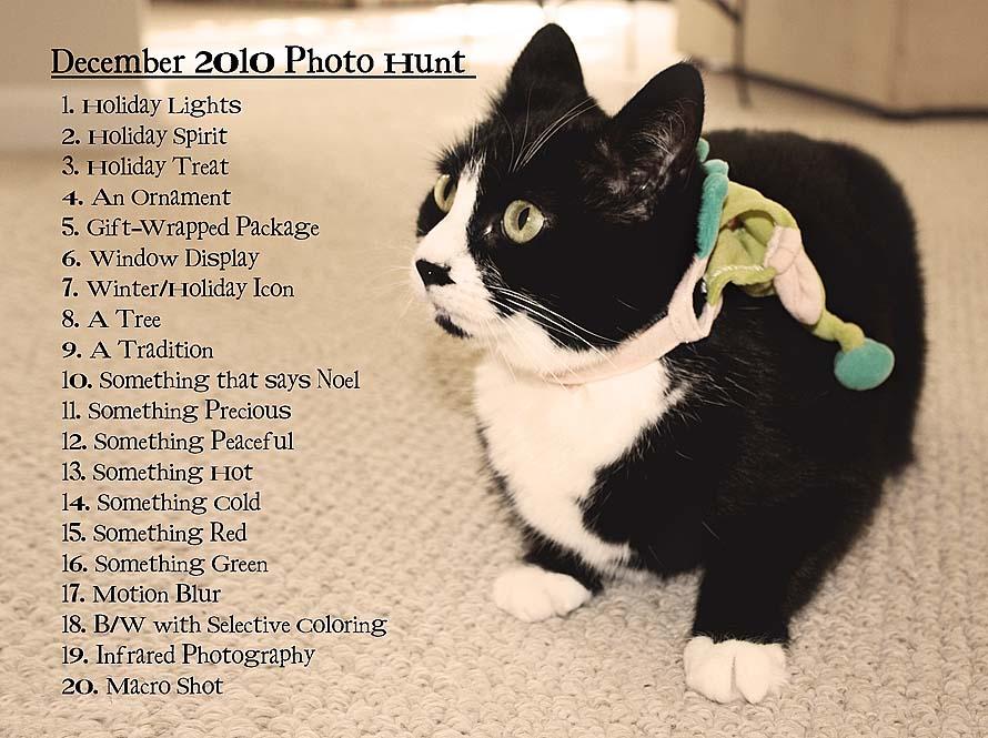 Photo Hunt List