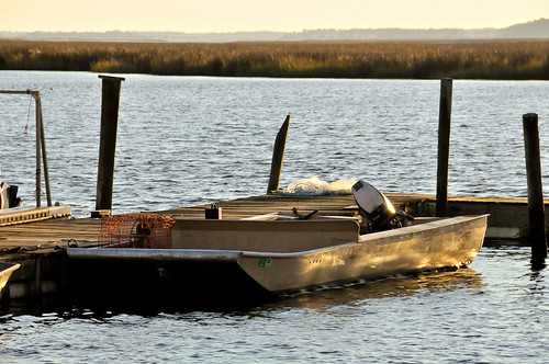 Spring Creek 12042010 421-1