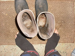 wet and coold (lasseman92) Tags: wet socks sock dirty holy wellies smelly hollow rubberboots holey