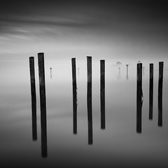 Eight5 (maxxsmart) Tags: california wood longexposure trees sunset blackandwhite bw seascape storm fall water glass fog clouds contrast canon reflections square bay 8 lee crop sonomacounty eight bodegabay 1x1 2010 waterscape ef1740f4lusm 5dmarkii silverefexpro lee6ndgrad leebigstopper lee10stopnd
