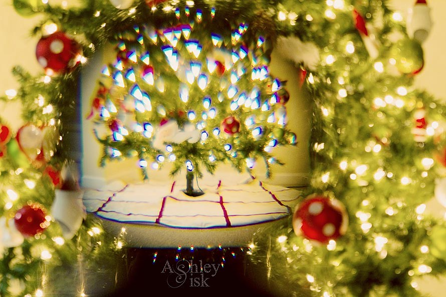 Wide Angle Christmas Tree RS