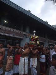Joy or Jealous (PassionParade) Tags: bird festival fruit night dusk fast folklore celebration facetoface hindu tamil colombo downpour pillaiyar bambalapitty soorasamhaaram