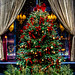 Christmas tree by Rosebud Prime in Chicago