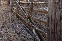 Frost on the gate (Rocky Pix) Tags: road wood autumn foothills mountain fall abandoned barn plane weeds gate colorado pix flood zoom crane farm longmont w rocky storage f22 normal nikkor michel hollow barnyard corral agricultural outbuilding deteriorating 32mm rockypix kiteley 110thsec 2470mmf28g